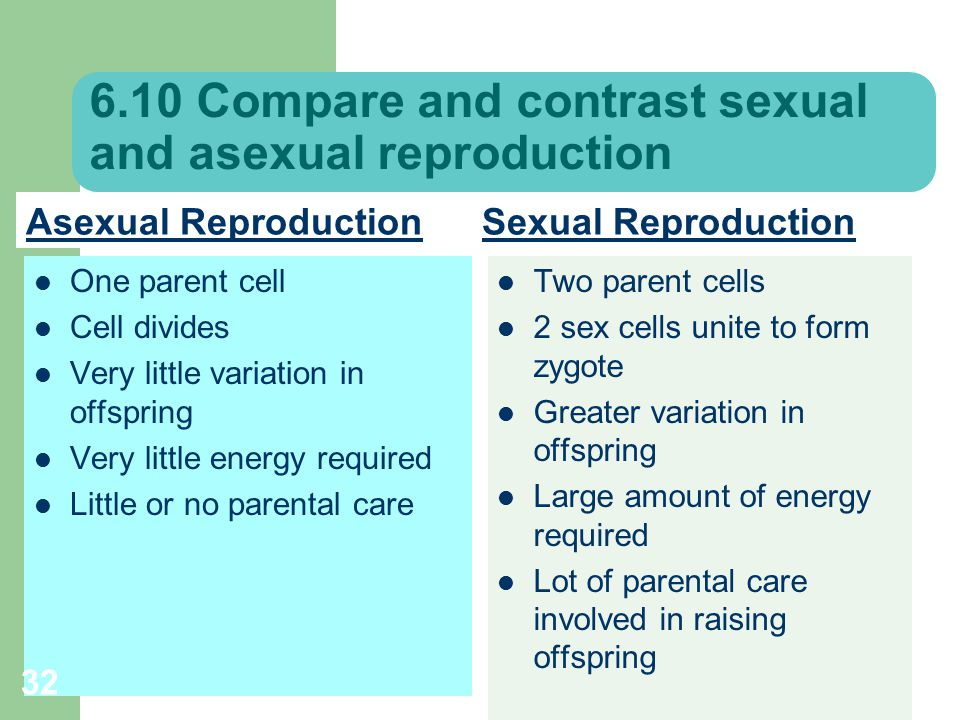Compare and contrast sexual and.asexual reproduction photo 90
