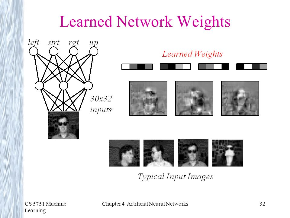 Learned Network Weights