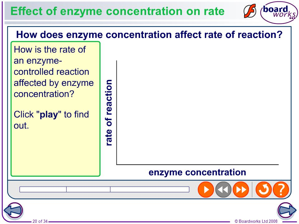 Effect of enzyme concentration on rate