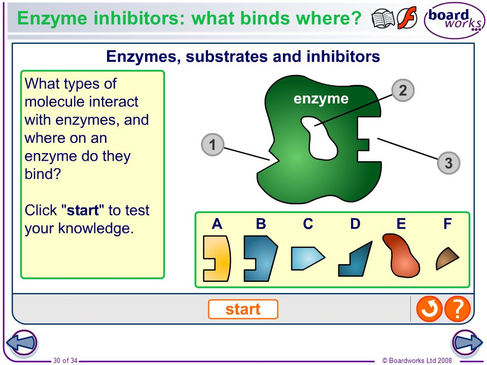 Enzyme inhibitors: what binds where