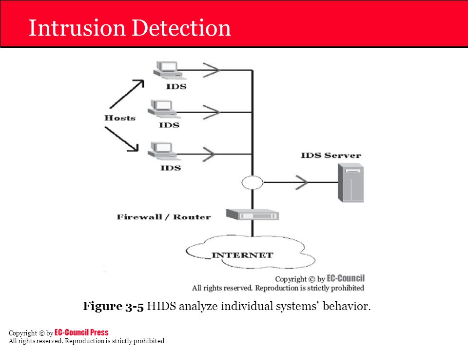 Intrusion Detection Figure 3-5 HIDS analyze individual systems' behavior.