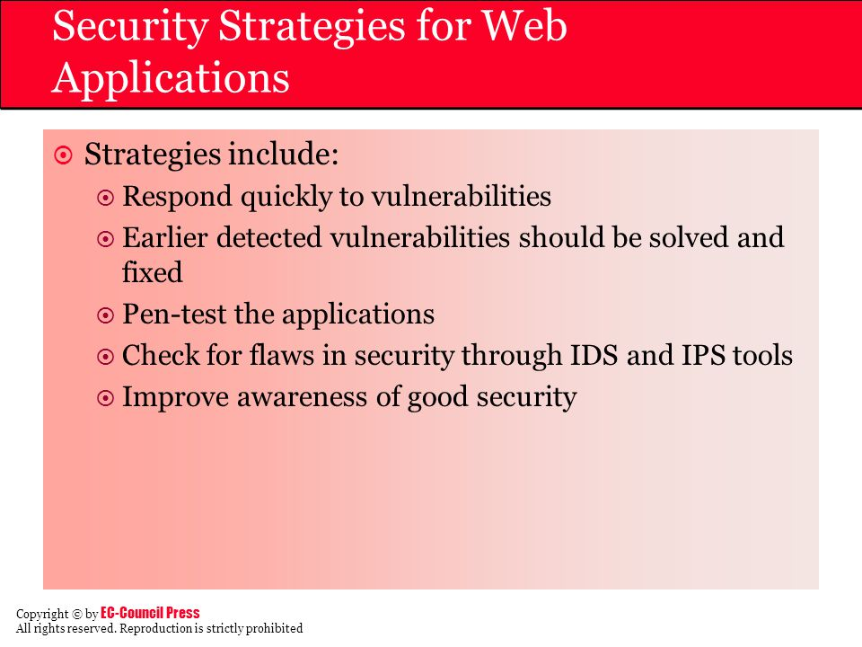 Security Strategies for Web Applications