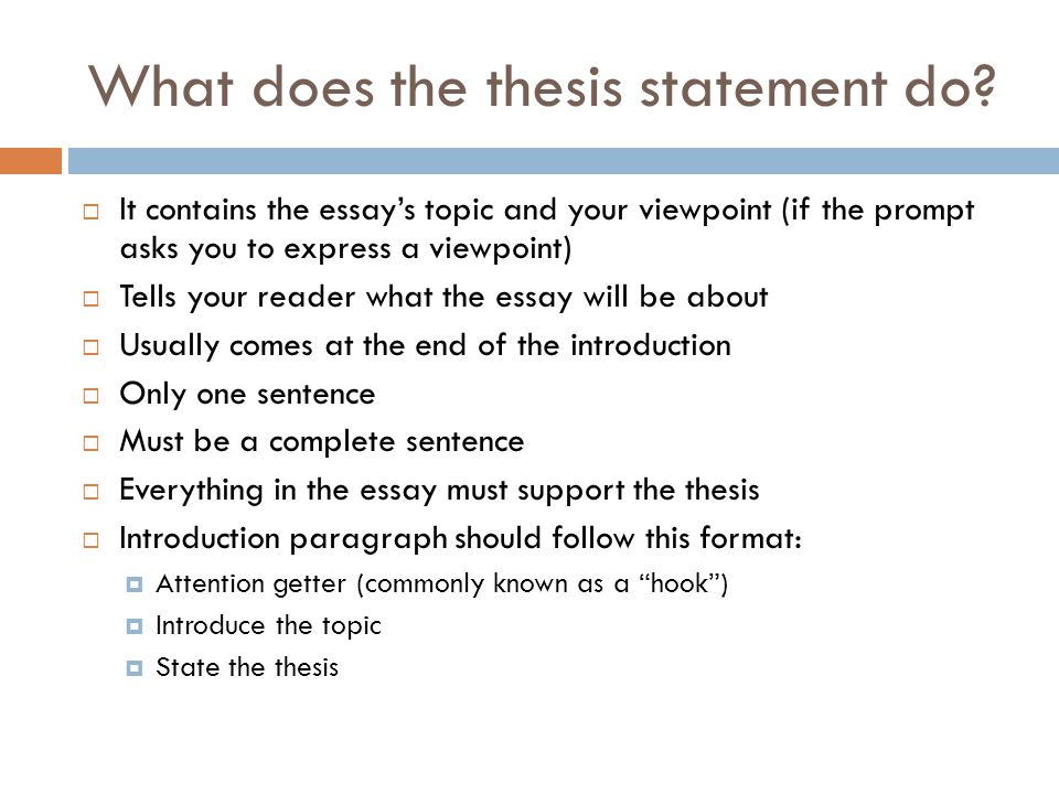 a thesis statement must do what