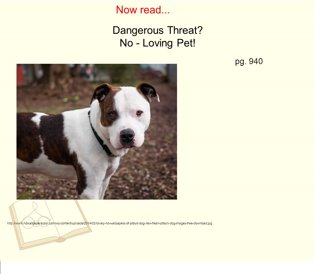 Now read... Dangerous Threat No - Loving Pet! pg. 940