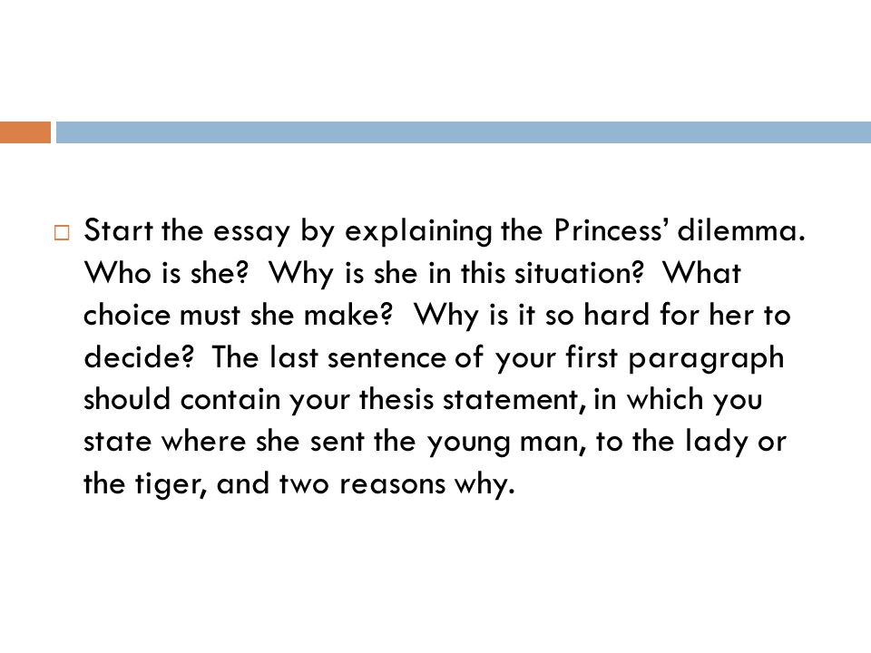 Start the essay by explaining the Princess' dilemma. Who is she