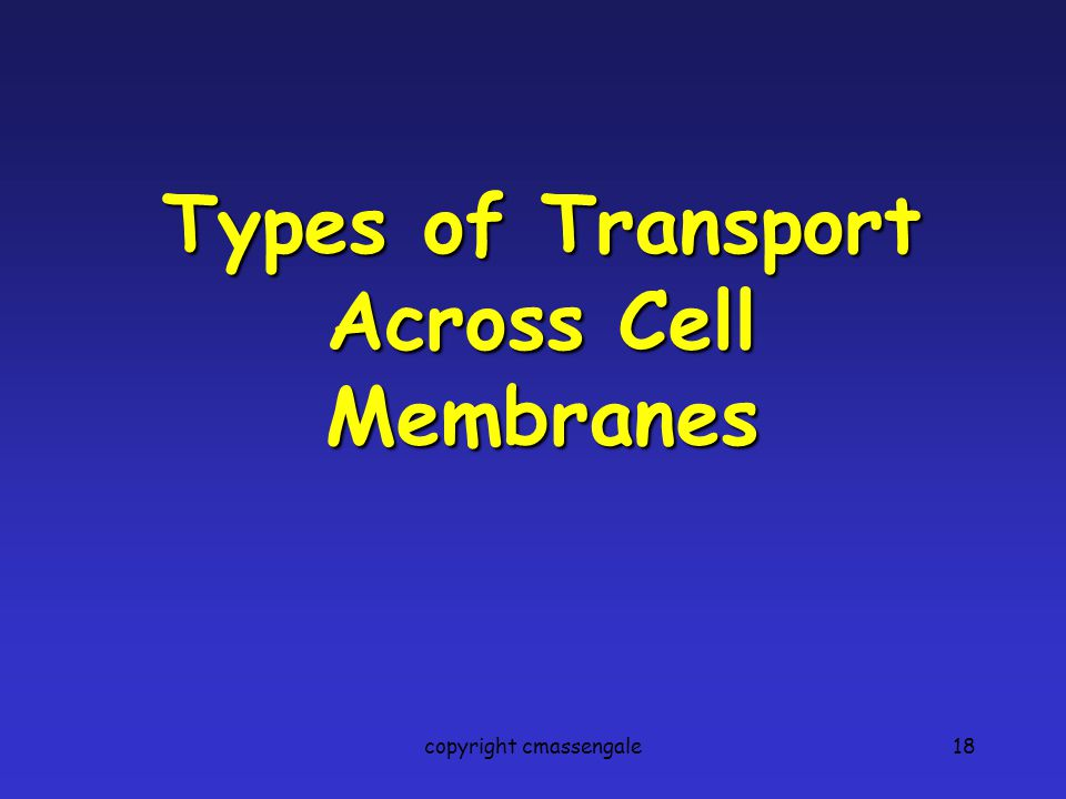 Types of Transport Across Cell Membranes