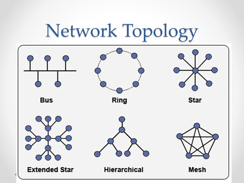 Network Topology Ppt Video Online Download
