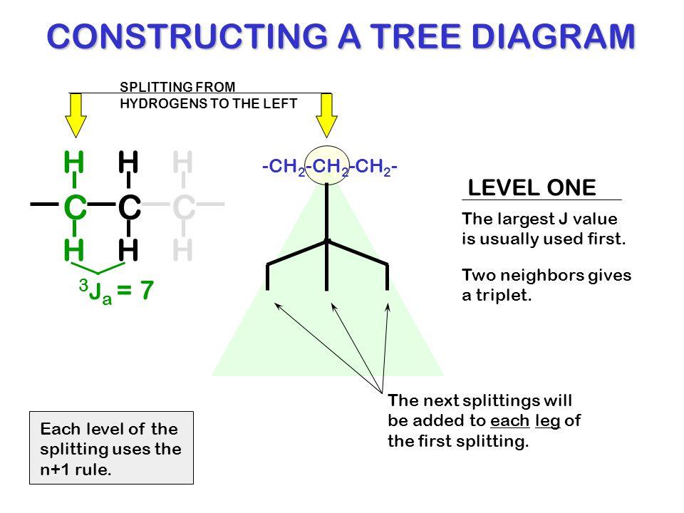 Unequal coupling tree diagrams splitting diagrams aka tree constructing a tree diagram ccuart Images