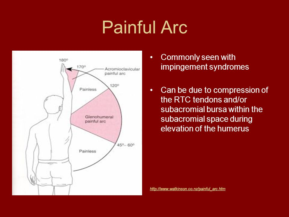 exercise interventions for the shoulder girdle ppt video