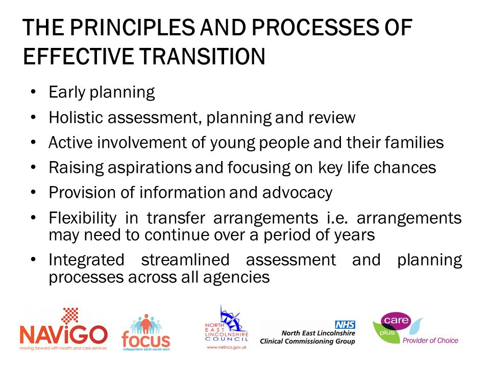 THE PRINCIPLES AND PROCESSES OF EFFECTIVE TRANSITION