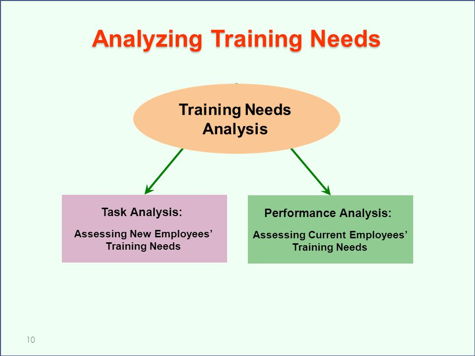 Analyzing Training Needs