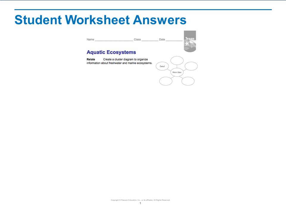 Aquatic Ecosystems Read The Lesson Title Aloud Ppt Video Online. Student Worksheet Answers. Worksheet. Ecosystem Worksheet Answers At Mspartners.co