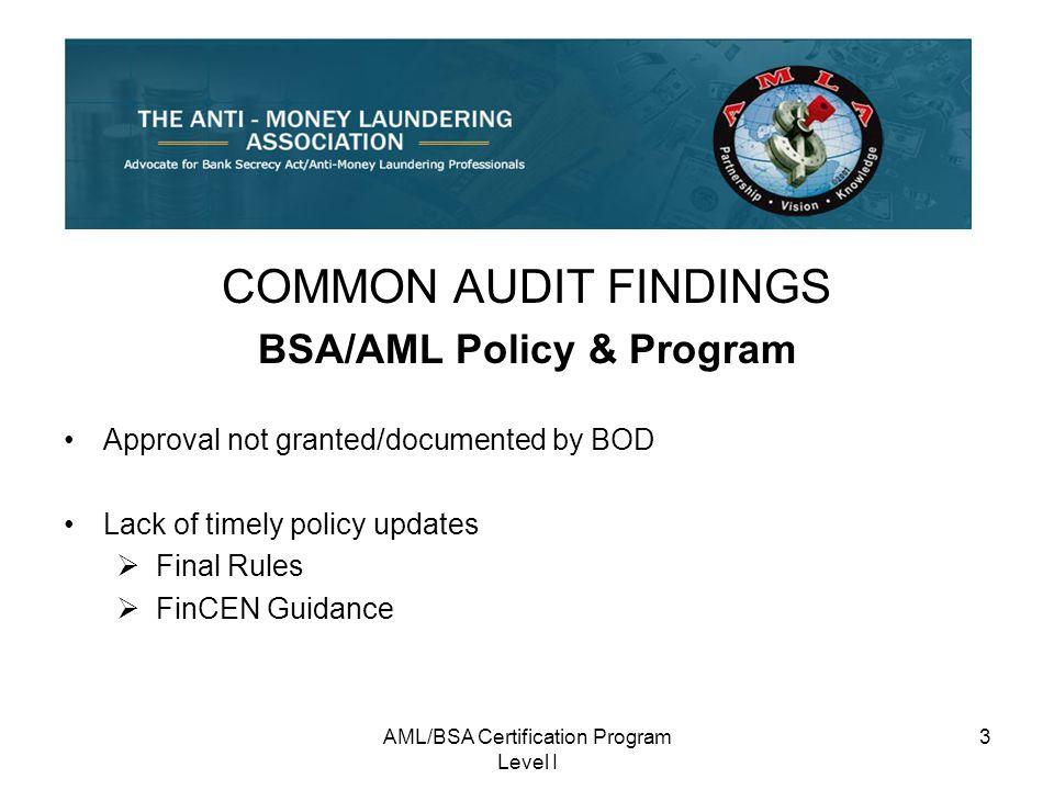 Amlbsa Certification Program Level I Ppt Download