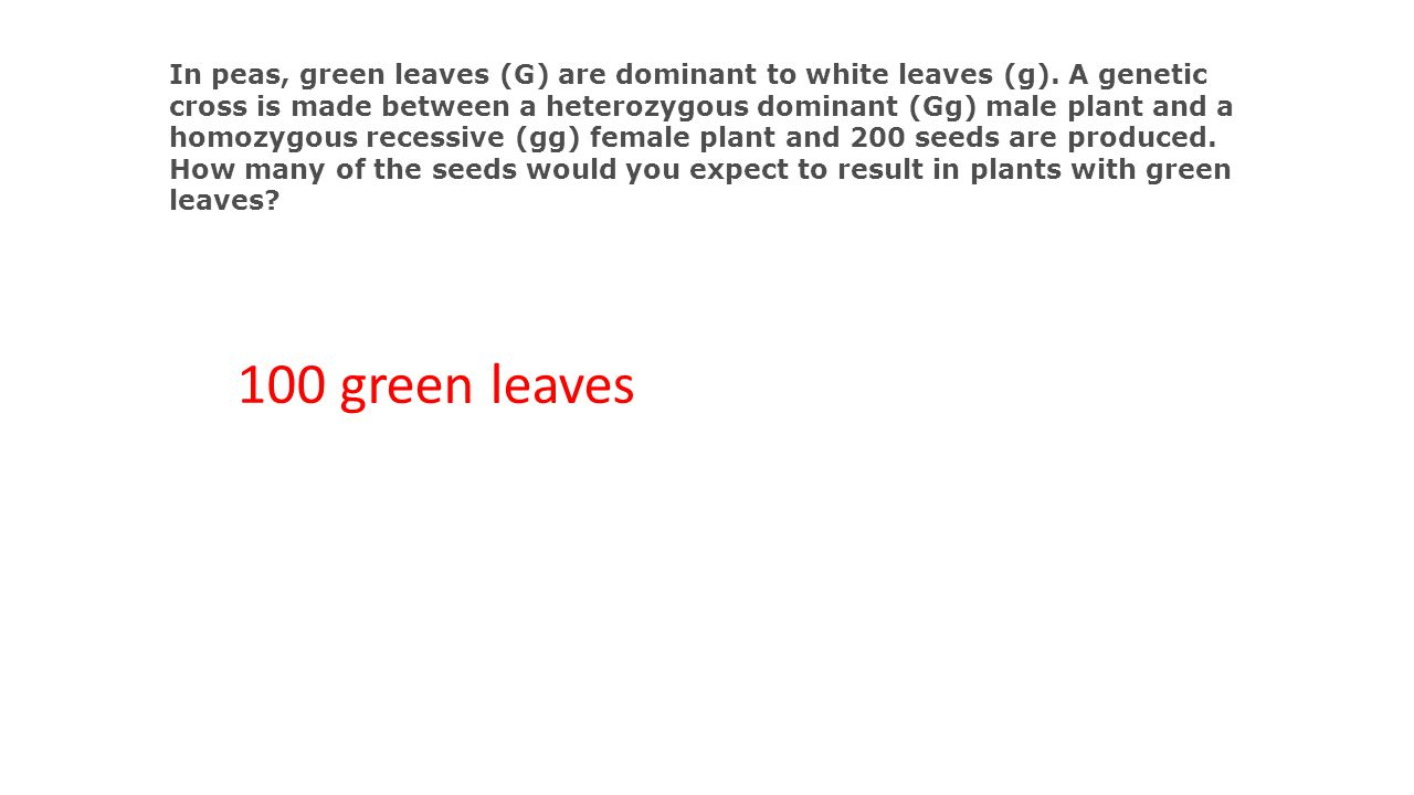 In peas, green leaves (G) are dominant to white leaves (g)