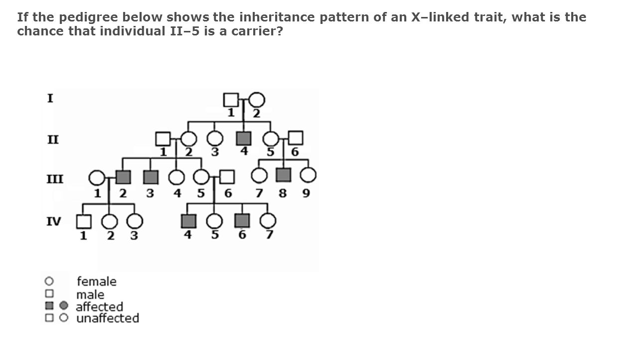If the pedigree below shows the inheritance pattern of an X–linked trait, what is the chance that individual II–5 is a carrier