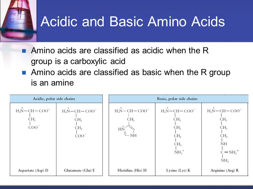 Chapter 19 proteins chem 1152 dr sheppard ppt video online download acidic and basic amino acids altavistaventures Images