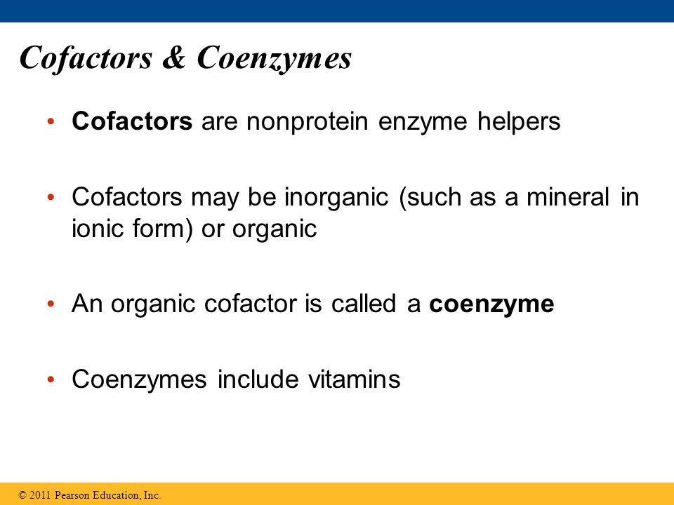 Cofactors & Coenzymes Cofactors are nonprotein enzyme helpers