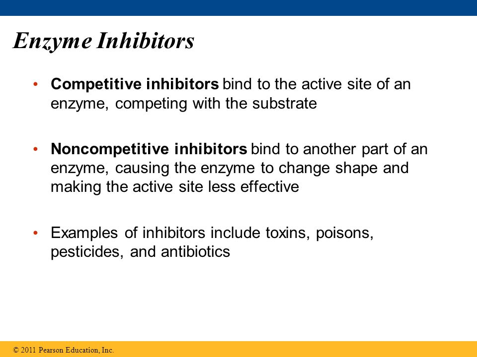 Enzyme Inhibitors Competitive inhibitors bind to the active site of an enzyme, competing with the substrate.