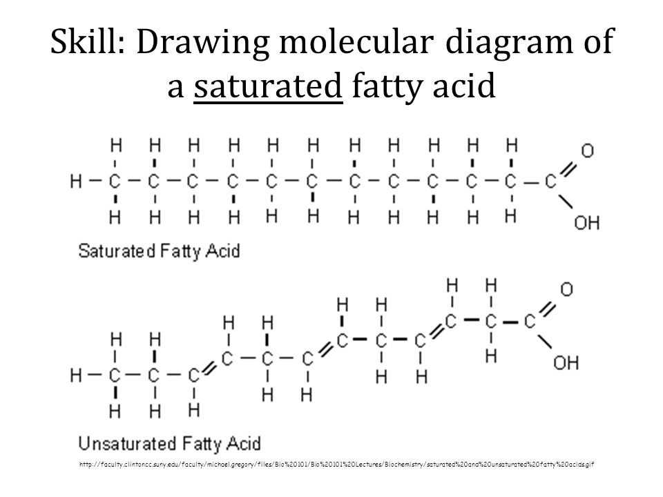Topic 2 Molecular Biology Ppt Video Online Download