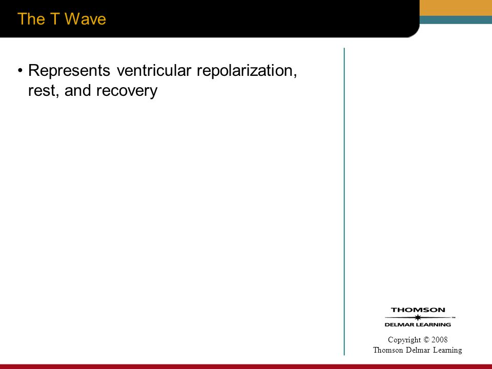 The T Wave Represents ventricular repolarization, rest, and recovery
