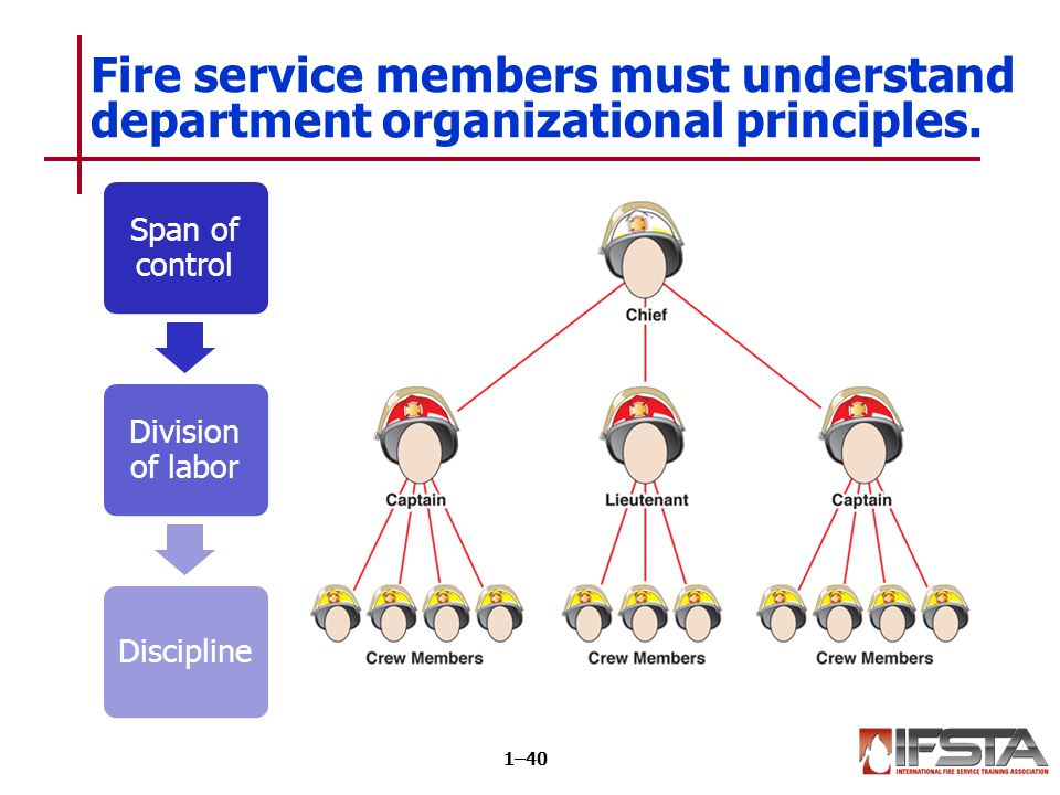 REVIEW QUESTION What are the organizational principles of the fire service