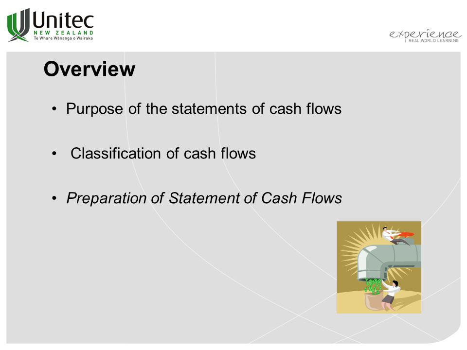 Overview Purpose of the statements of cash flows