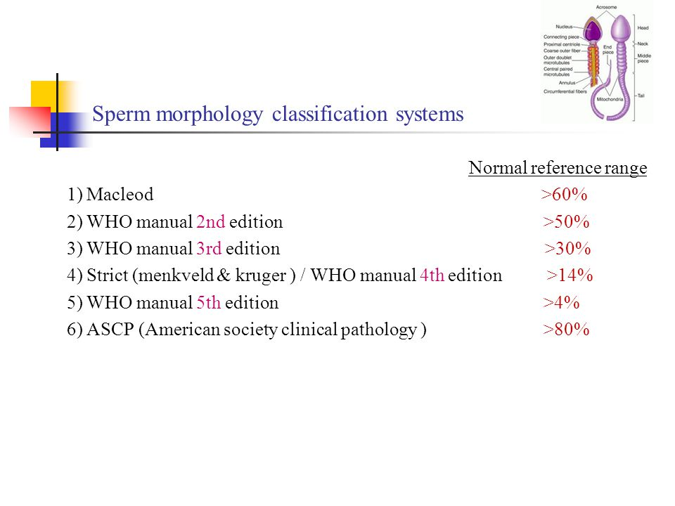 Who 4th edition for sperm morphology