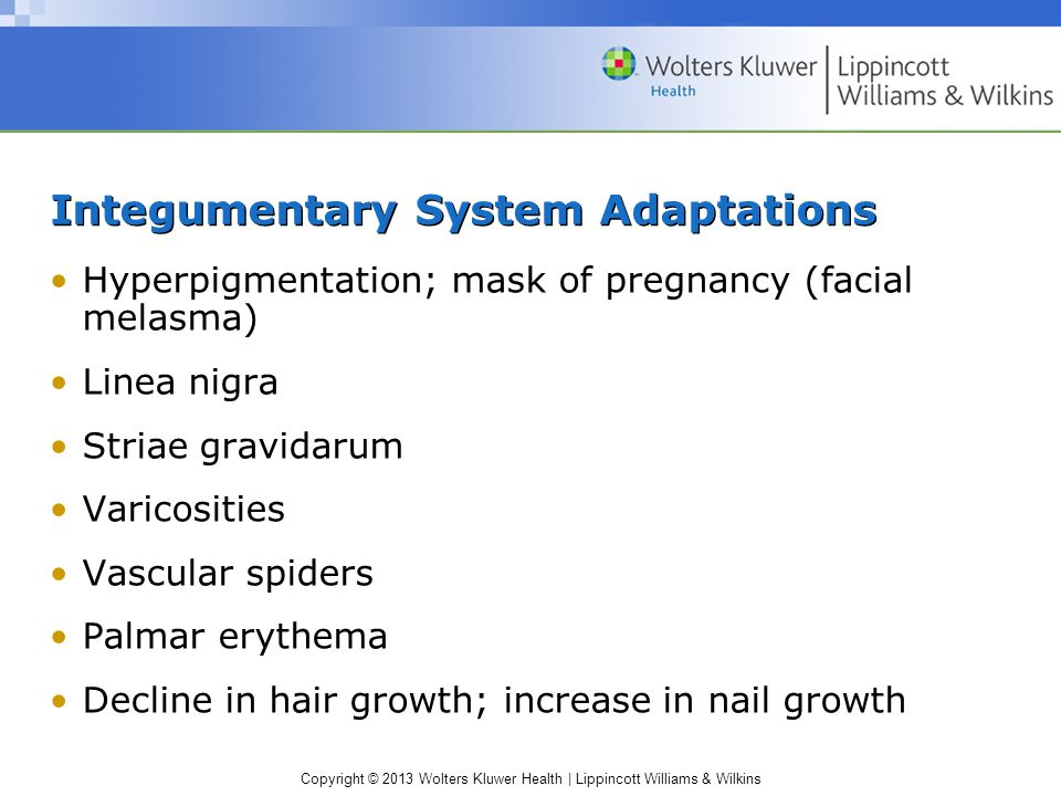 Maternal Adaptation During Pregnancy - ppt video online download