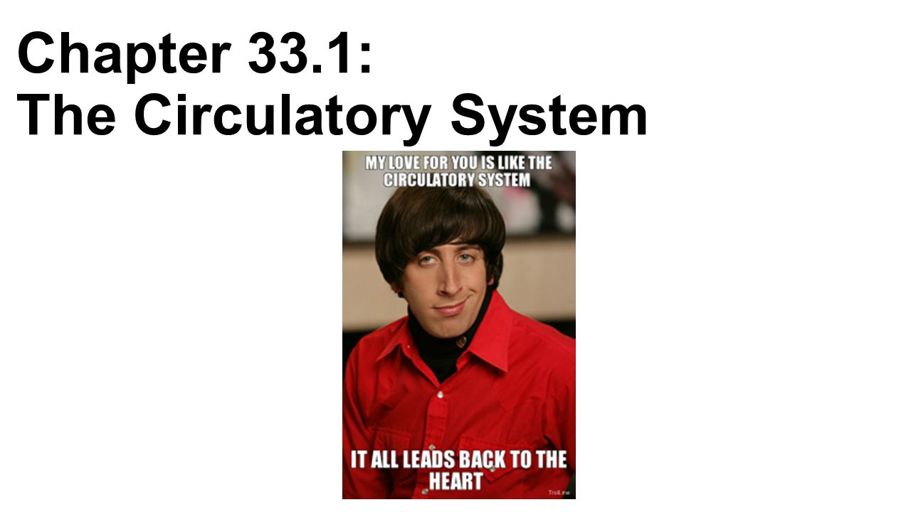 Chapter 33.1: The Circulatory System