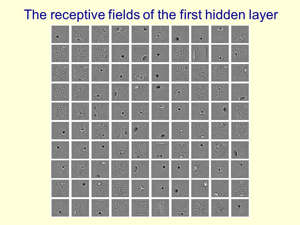 The receptive fields of the first hidden layer