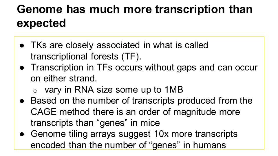 Genome has much more transcription than expected