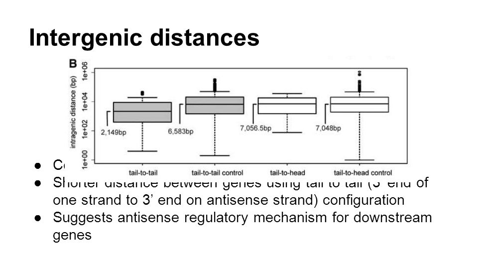 Intergenic distances Compares distance between TUs