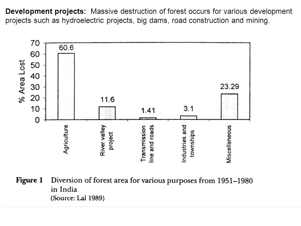 Development projects: Massive destruction of forest occurs for various development projects such as hydroelectric projects, big dams, road construction and mining.
