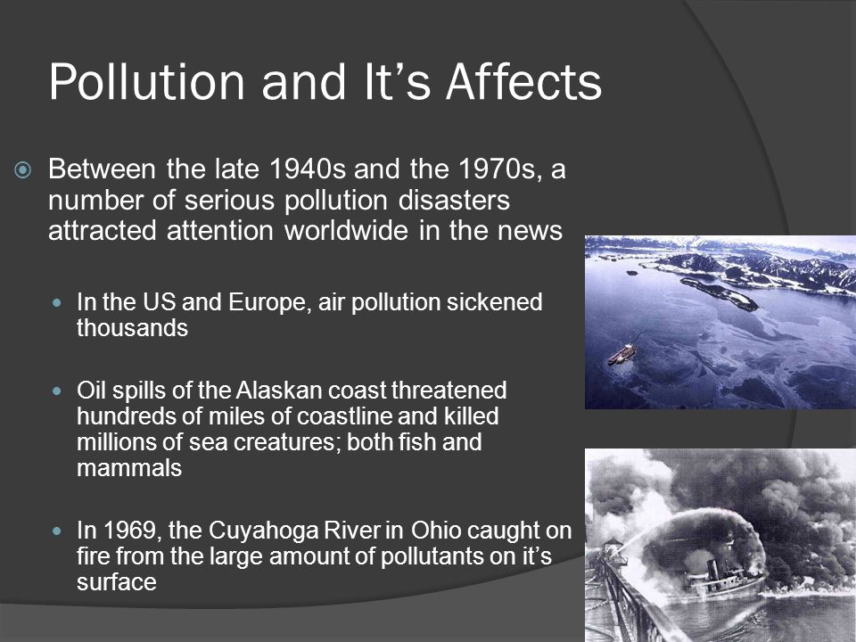 Pollution and It's Affects