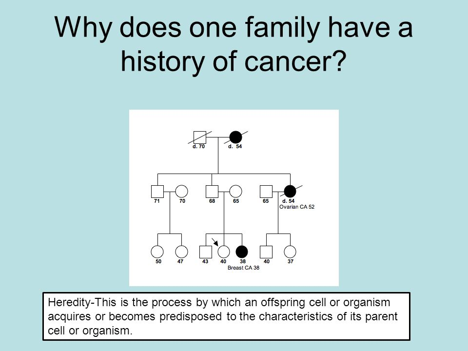 Why does one family have a history of cancer