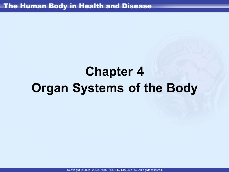 Chapter 4 Organ Systems of the Body