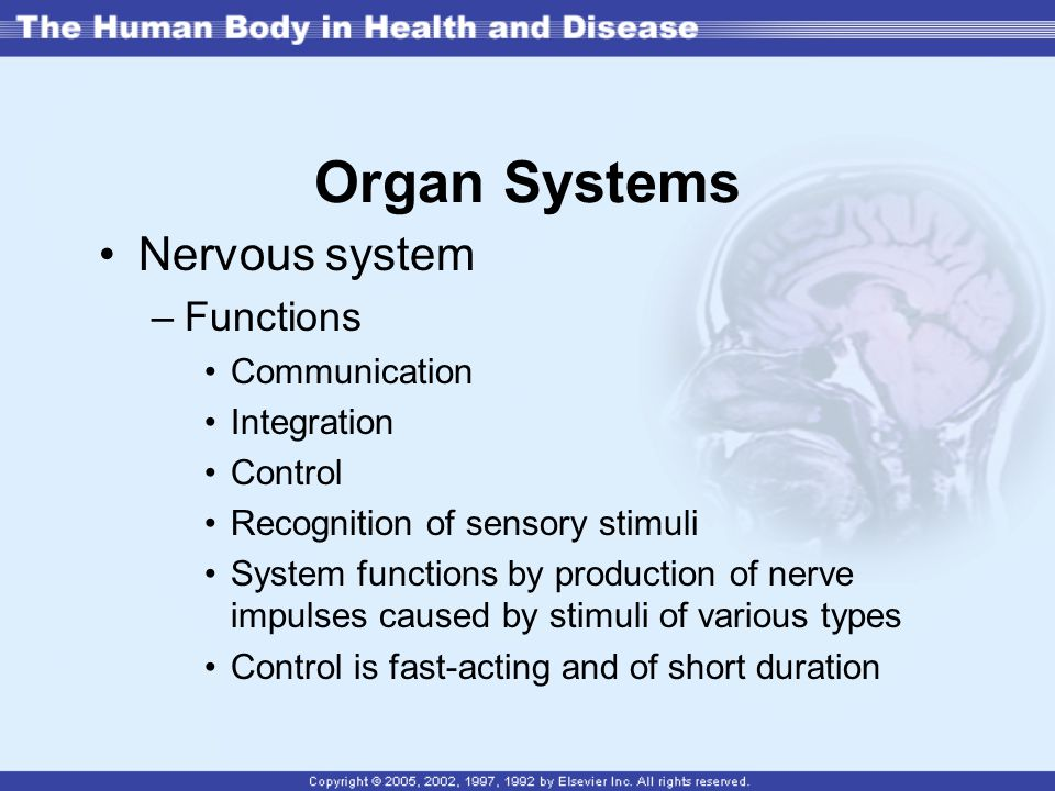 Organ Systems Nervous system Functions Communication Integration