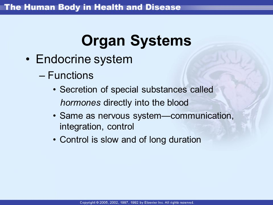 Organ Systems Endocrine system Functions