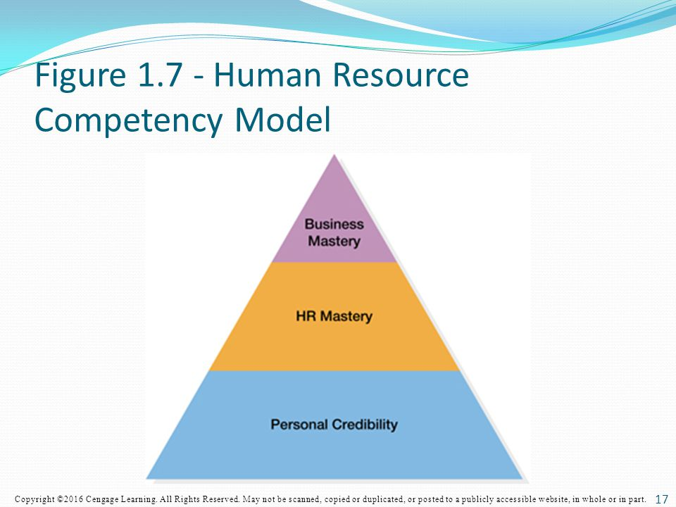 Figure Human Resource Competency Model