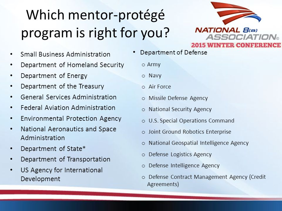 Which mentor-protégé program is right for you