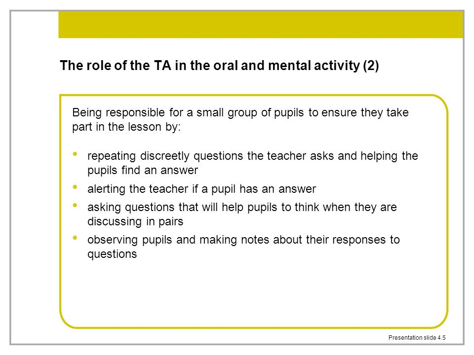 The role of the TA in the oral and mental activity (2)