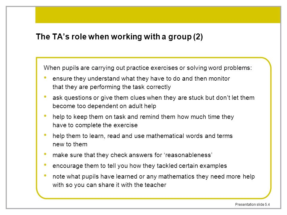 The TA's role when working with a group (2)