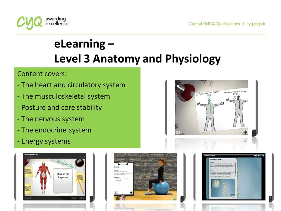 Central YMCA Qualifications (CYQ) - ppt download