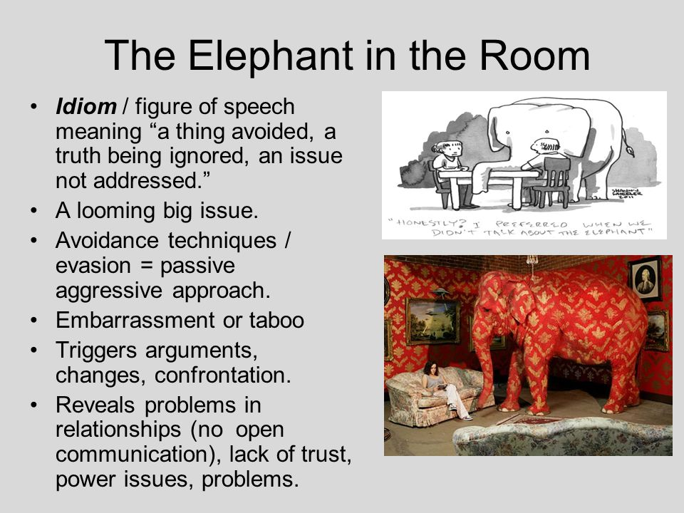 Image result for elephant in the room meaning