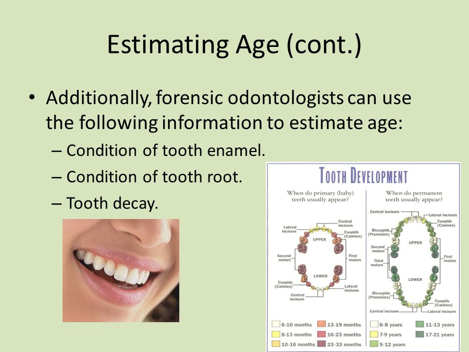 Dental Identification And Lip Prints Ppt Video Online Download