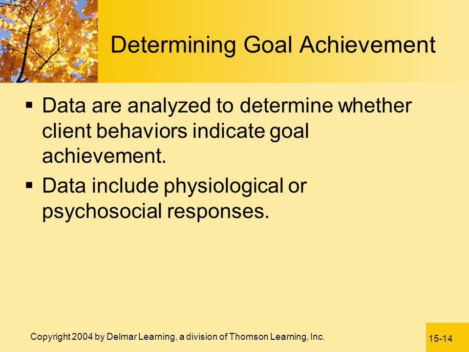 Determining Goal Achievement