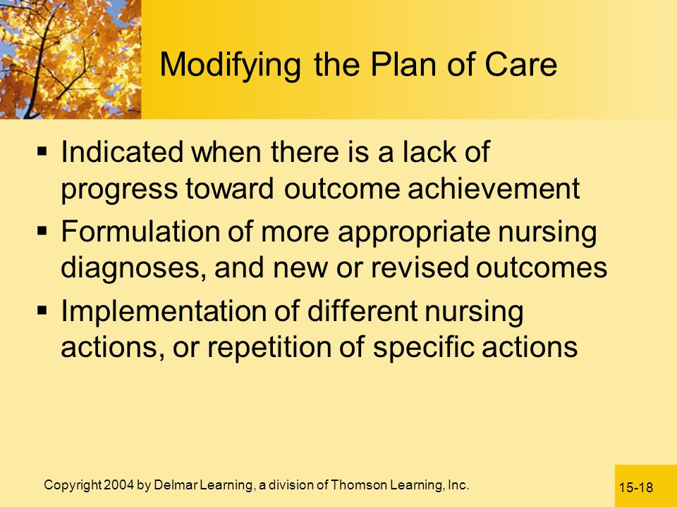 Modifying the Plan of Care
