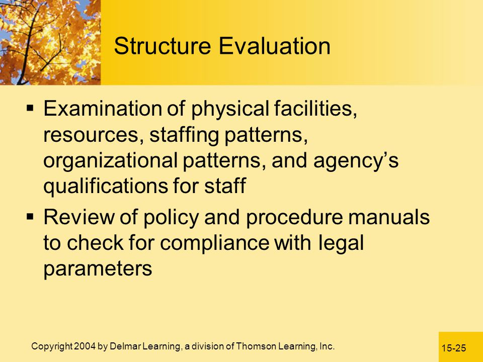Structure Evaluation Examination of physical facilities, resources, staffing patterns, organizational patterns, and agency's qualifications for staff.