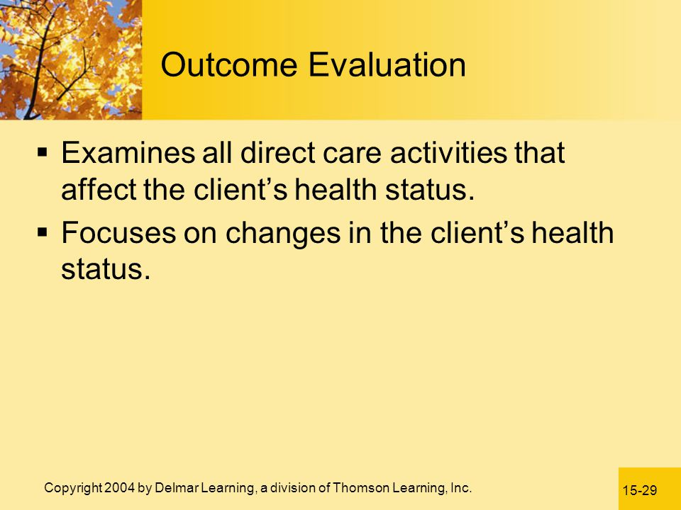Outcome Evaluation Examines all direct care activities that affect the client's health status. Focuses on changes in the client's health status.