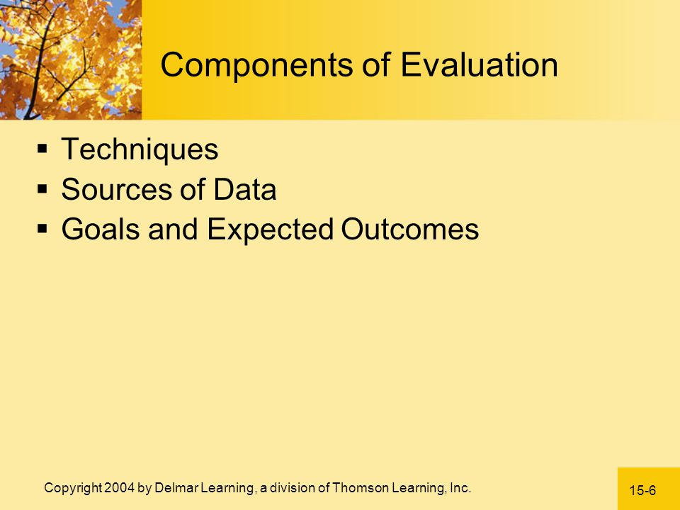 Components of Evaluation